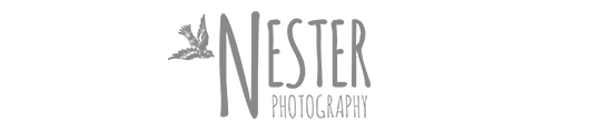 Wedding Photographer San Diego logo